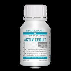 Activ Zeolit Silicic